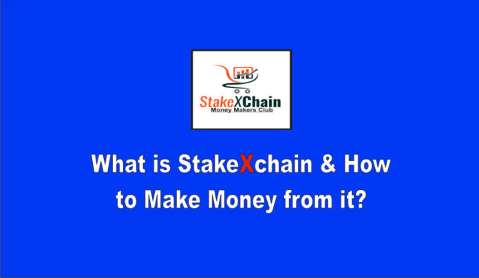 how does stakexchain work